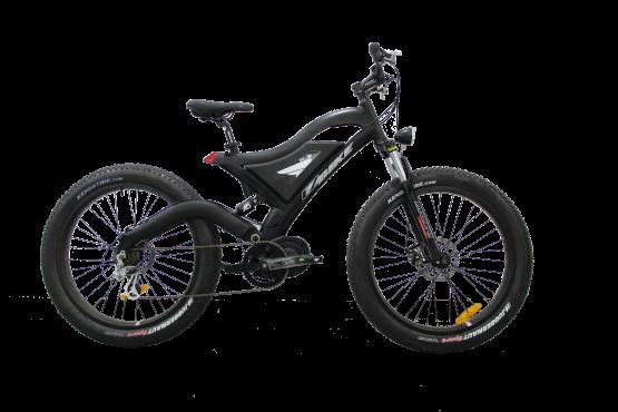 Bicicleta eléctrica de montaña FJM05 250w LCD